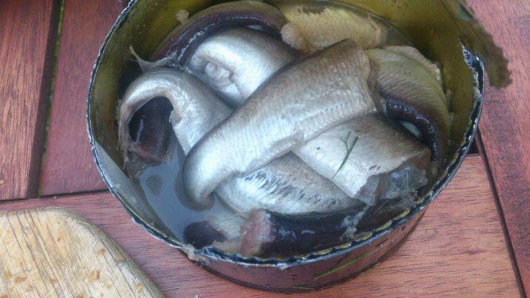 Калейдоскоп, На запах шведского национального блюда вызвали спасателей | На запах шведского национального блюда вызвали спасателей