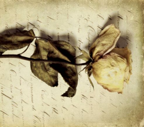 Статьи Культура, Недавно найденное письмо Ганса Христиана Андерсена рассказало историю любви всей его жизни | Недавно найденное письмо Ганса Христиана Андерсена рассказало историю любви всей его жизни