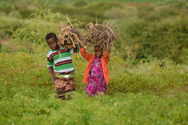 Общество, Пропавший шведский подросток нашелся в тюрьме в Эфиопии | Пропавший шведский подросток нашелся в тюрьме в Эфиопии