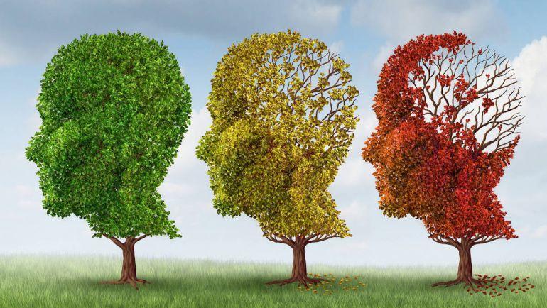 Калейдоскоп, В Дании строят деревни для страдающих болезнью Альцгеймера | В Дании строят деревни для страдающих болезнью Альцгеймера