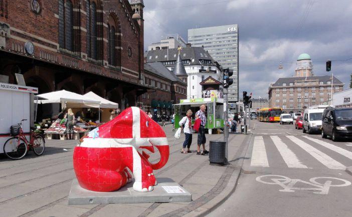 Общество, Датские власти запретили выезд из страны предполагаемым новобранцам Исламского государства | Датские власти запретили выезд из страны предполагаемым новобранцам Исламского государства