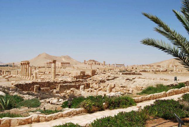 Общество, Джихадист из Дании приговорен к тюрьме в Ливане | Джихадист из Дании приговорен к тюрьме в Ливане
