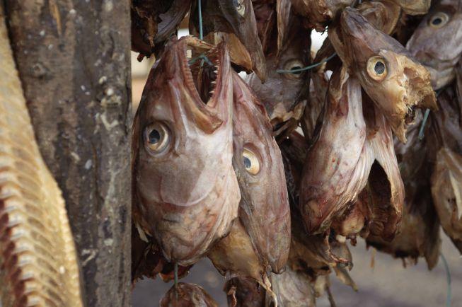 Бизнес, Решение центробанка Нигерии поставило производителей норвежской сушёной трески на грань разорения | Решение центробанка Нигерии поставило производителей норвежской сушёной трески на грань разорения