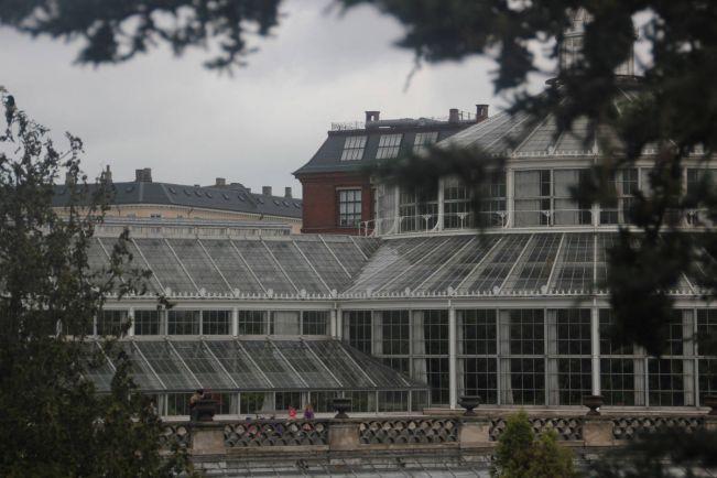 Общество, Университет Копенгагена готов учить беженцев | Университет Копенгагена готов учить беженцев