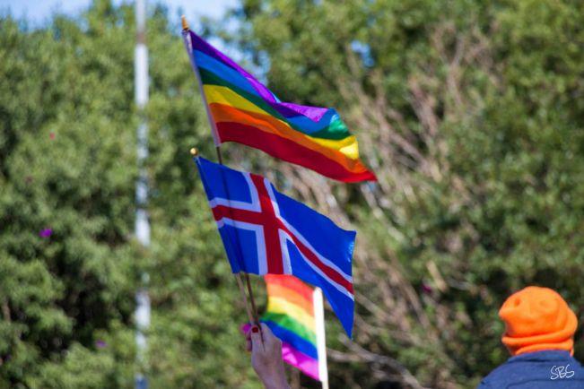 Общество, Гей-брак, заключённый в Исландии - это навсегда | Гей-брак, заключённый в Исландии - это навсегда