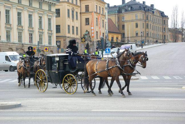 Общество, Нового шведского принца назвали Александром | Нового шведского принца назвали Александром
