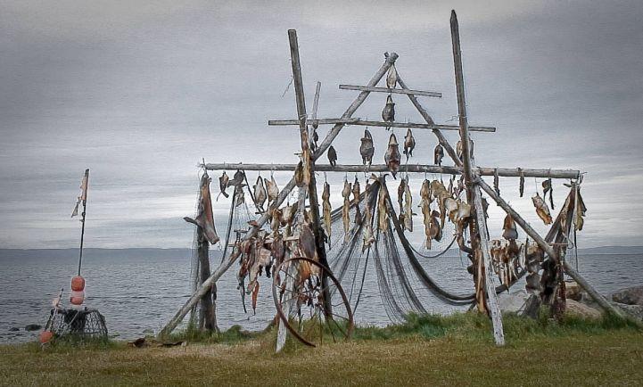 Исландские законы о рыбной ловле запутаннее, чем их пытаются ...