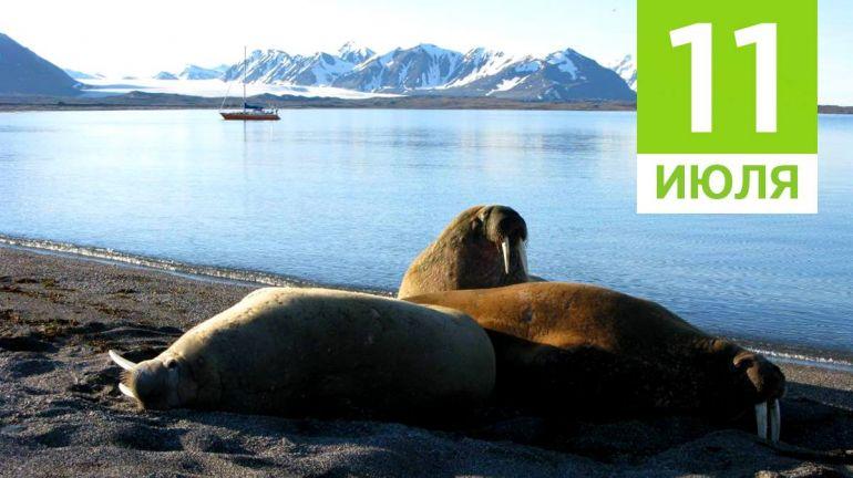 Июль, 11 | Календарь знаменательных дат Скандинавии