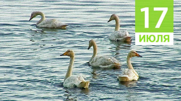 Июль, 17 | Календарь знаменательных дат Скандинавии