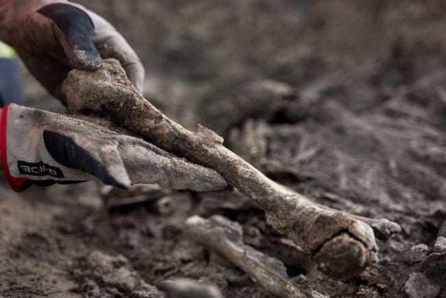 Общество, Датские археологи нашли человеческие останки на дне древнего колодца | Датские археологи нашли человеческие останки на дне древнего колодца