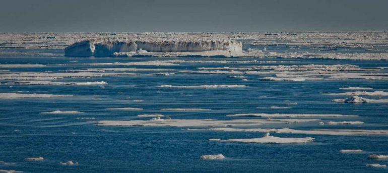 Общество, Дания не заинтересована в двусторонних переговорах с Россией о разделе Арктики | Дания не заинтересована в двусторонних переговорах с Россией о разделе Арктики