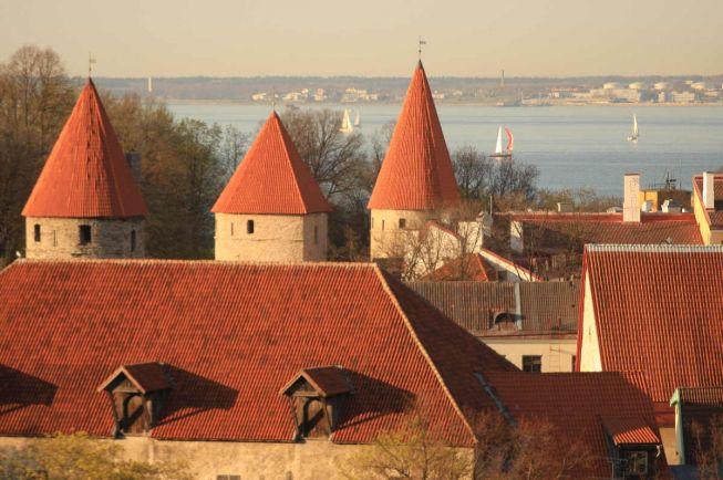 Общество, Во время своего председательства в ЕС Эстония будет продвигать идею единого цифрового пространства | Во время своего председательства в ЕС Эстония будет продвигать идею единого цифрового пространства