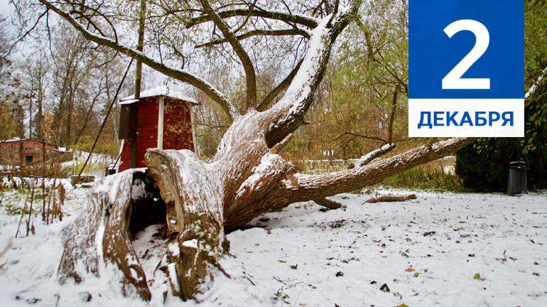 Декабрь, 2 | Календарь знаменательных дат Скандинавии