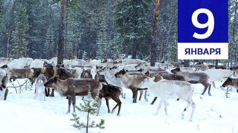 Январь, 9 | Календарь знаменательных дат Скандинавии