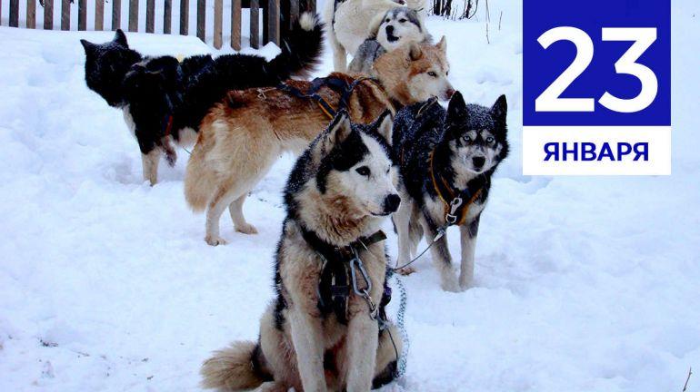 Январь, 23 | Календарь знаменательных дат Скандинавии