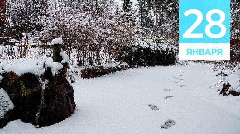 Январь, 28 | Календарь знаменательных дат Скандинавии