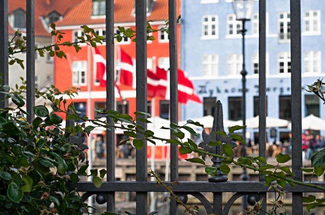 Общество, Получить постоянный вид на жительство в Дании станет сложнее | Получить постоянный вид на жительство в Дании станет сложнее