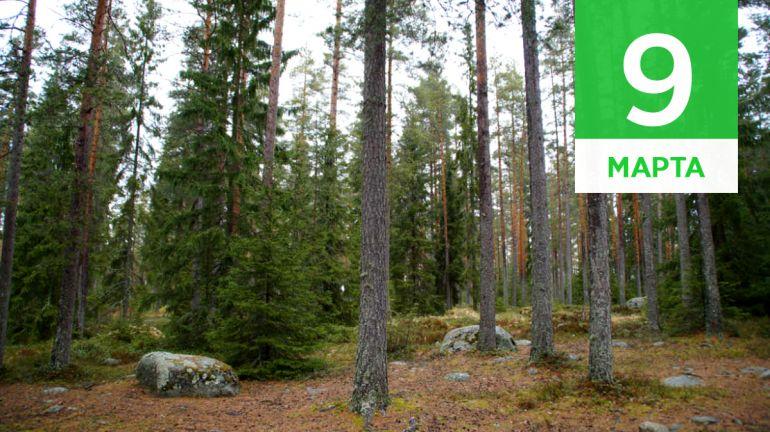Март, 9 | Календарь знаменательных дат Скандинавии