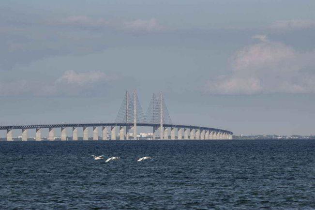 Общество, Между Данией и Швецией запустят паром для велосипедистов | Между Данией и Швецией запустят паром для велосипедистов