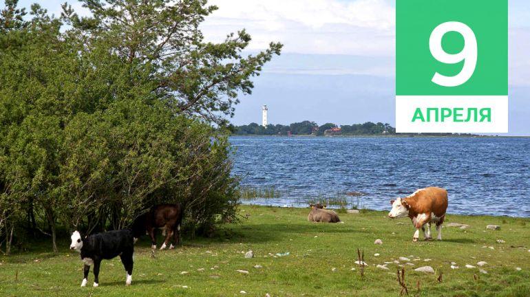 Апрель, 9 | Календарь знаменательных дат Скандинавии