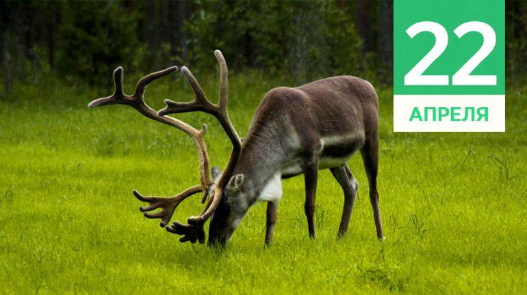 Апрель, 22 | Календарь знаменательных дат Скандинавии