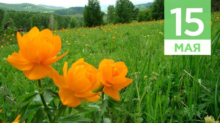 Май, 15 | Календарь знаменательных дат Скандинавии