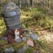 Финский детектив: убийство Кюлликки Саари