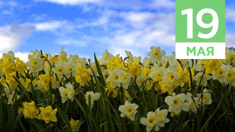 Май, 19 | Календарь знаменательных дат Скандинавии