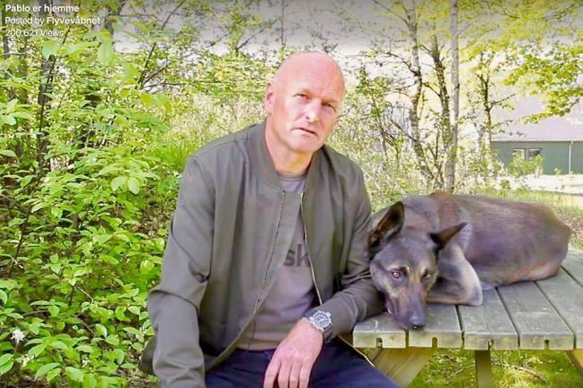 Калейдоскоп, Дважды украденного датского служебного пса снова вернули владельцу | Дважды украденного датского служебного пса снова вернули владельцу