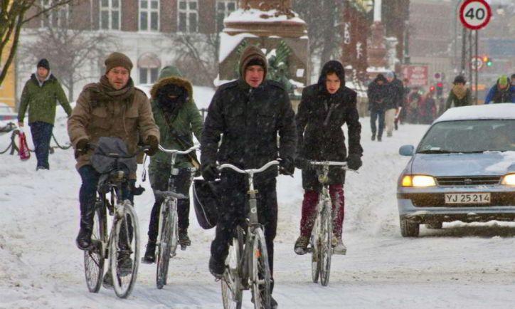 Общество, Мэр Копенгагена предлагает запретить въезд в город на новых дизельных автомобилях |