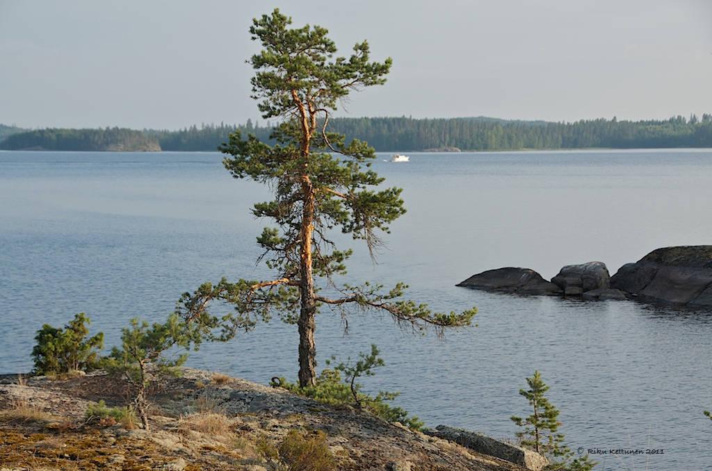 Flikr/ Riku Kettunen/ Сайменское озеро
