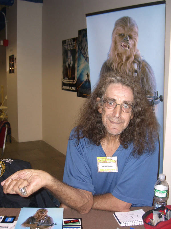 Фото: wikipedia.org / Peter Mayhew