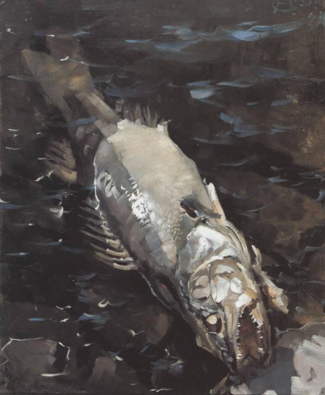 «Гниющий судак» (1884)