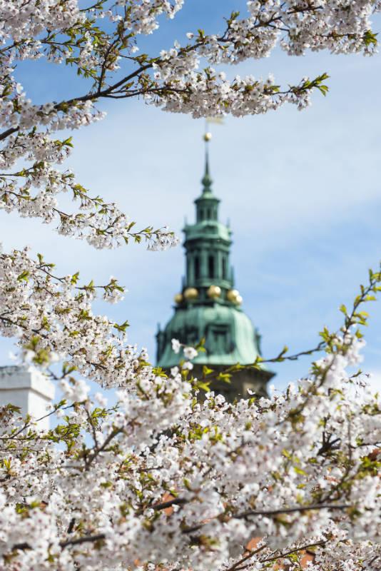 Фото: Thomas Rahbek / Kronborg