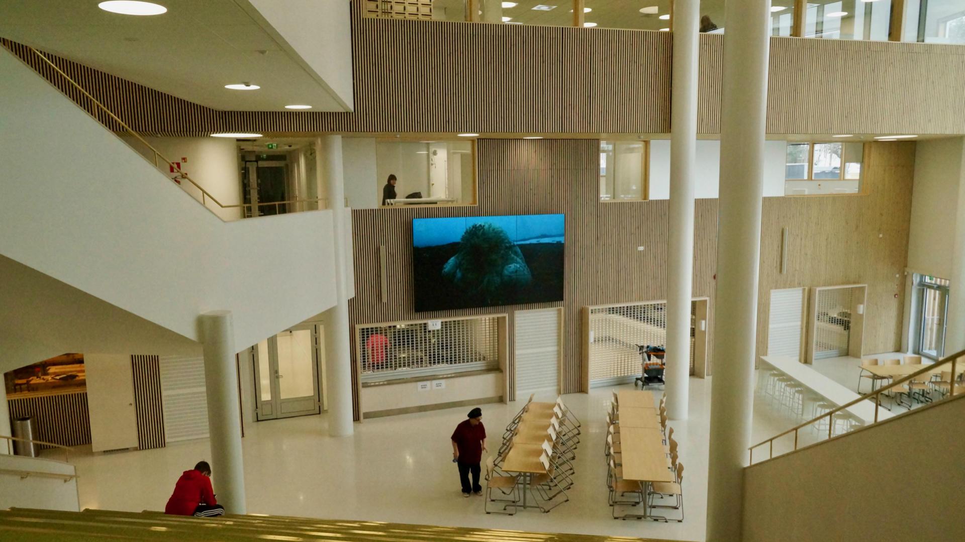 Преподаватели могут управлять огромной панелью в столовой-актовом зале со своих мобильных телефонов. Фотография: ScandiNews